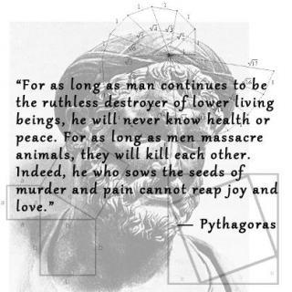 pythagoras on fakebook  pythagoras has changed his cover photo to