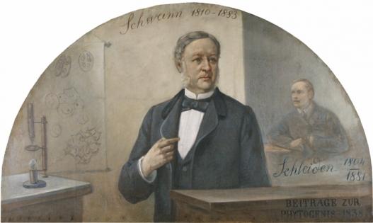 Theodor Schwann on 'Fakebook'