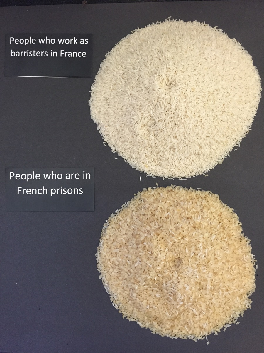 """Rice above the statistics"": using grains of rice for data visualisation"